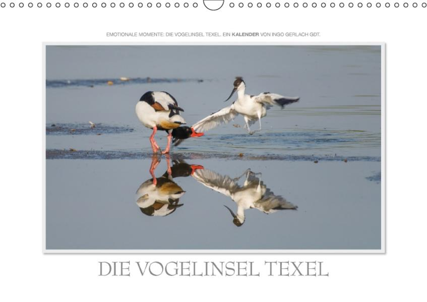 Emotionale Momente: Die Vogelinsel Texel. / CH-Version (Wandkalender 2017 DIN A3 quer) - Coverbild