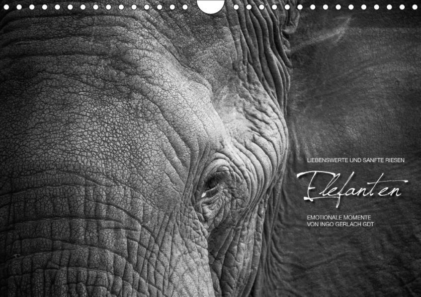 Emotionale Momente: Elefanten in black & white / CH-Version (Wandkalender 2017 DIN A4 quer) - Coverbild