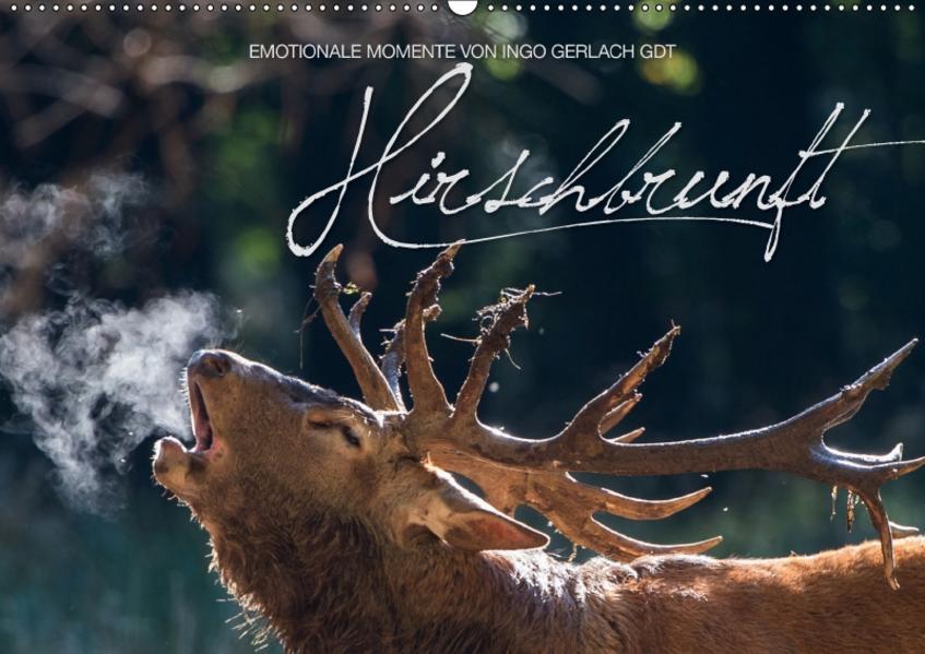 Emotionale Momente: Hirschbrunft / CH-Version (Wandkalender 2017 DIN A2 quer) - Coverbild