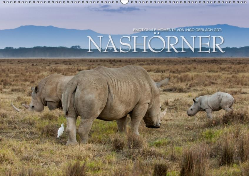 Emotionale Momente: Nashörner / CH-Version (Wandkalender 2017 DIN A2 quer) - Coverbild