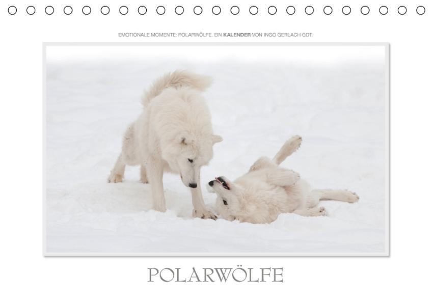 Emotionale Momente: Polarwölfe. / CH-Version (Tischkalender 2017 DIN A5 quer) - Coverbild
