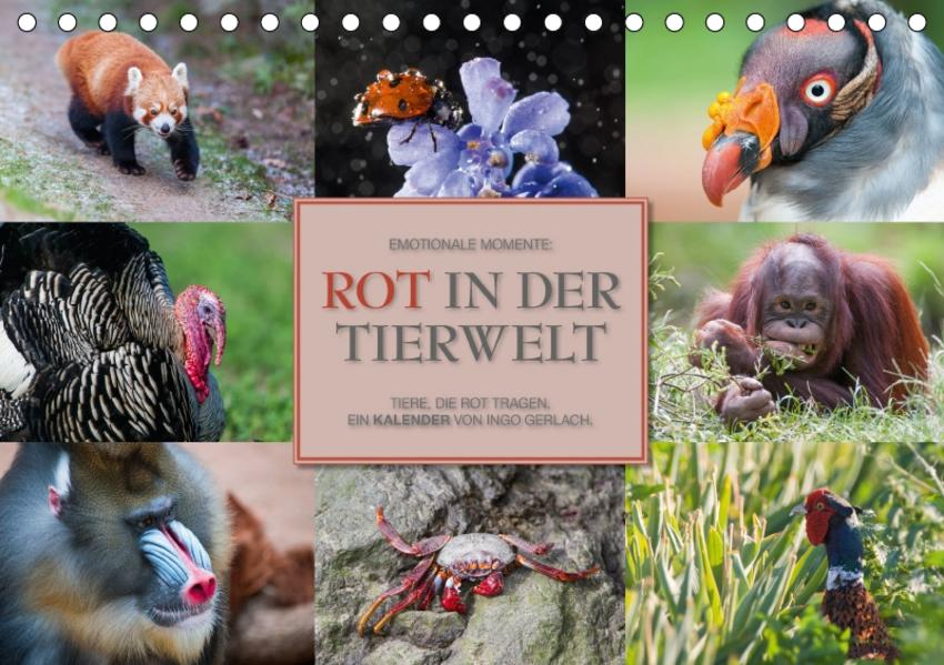 Emotionale Momente: Rot in der Tierwelt / CH-Version (Tischkalender 2017 DIN A5 quer) - Coverbild