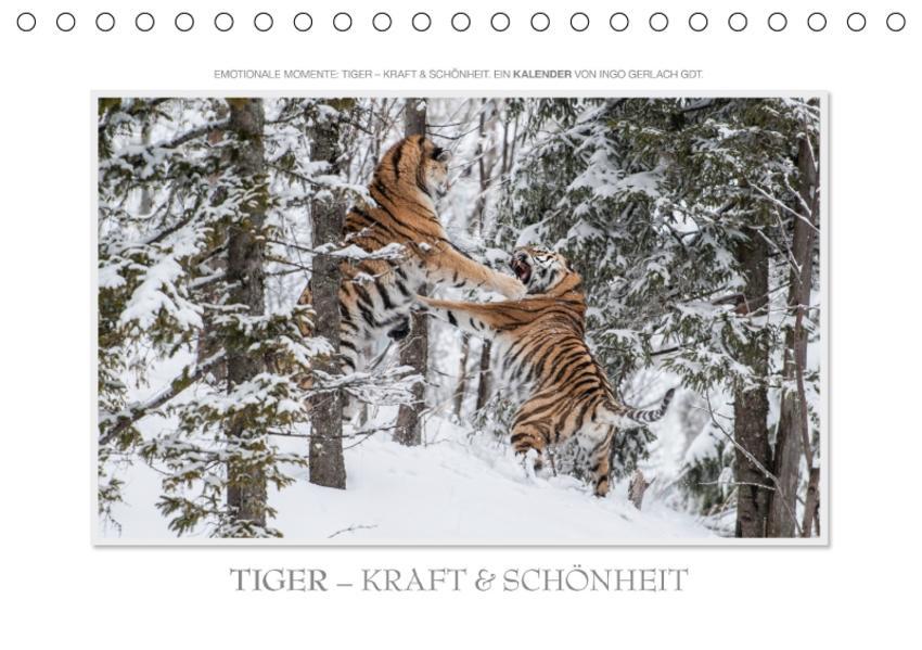 Emotionale Momente: Tiger - Kraft & Schönheit. / CH-Version (Tischkalender 2017 DIN A5 quer) - Coverbild