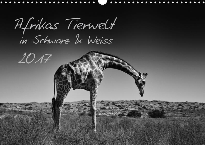Afrikas Tierwelt in Schwarz & Weiss / CH-Version (Wandkalender 2017 DIN A3 quer) - Coverbild