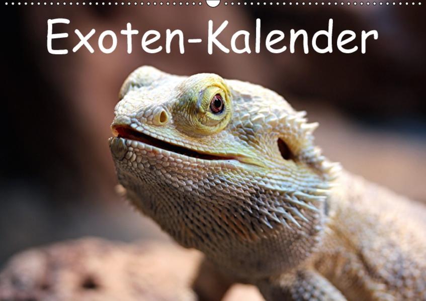 Exoten-Kalender (Wandkalender 2017 DIN A2 quer) - Coverbild