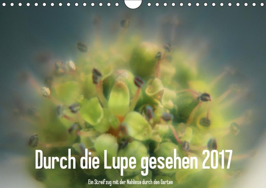 Durch die Lupe gesehen 2017 / CH-Version (Wandkalender 2017 DIN A4 quer) - Coverbild