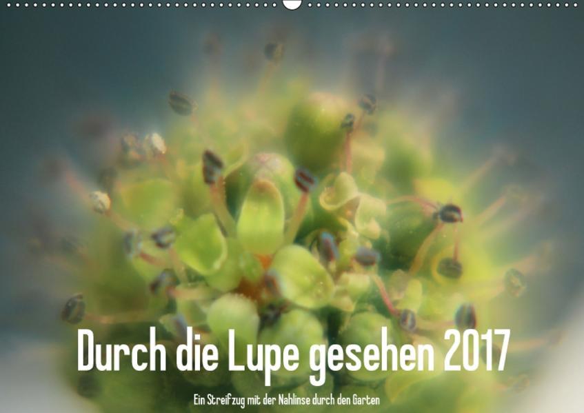 Durch die Lupe gesehen 2017 / CH-Version (Wandkalender 2017 DIN A2 quer) - Coverbild
