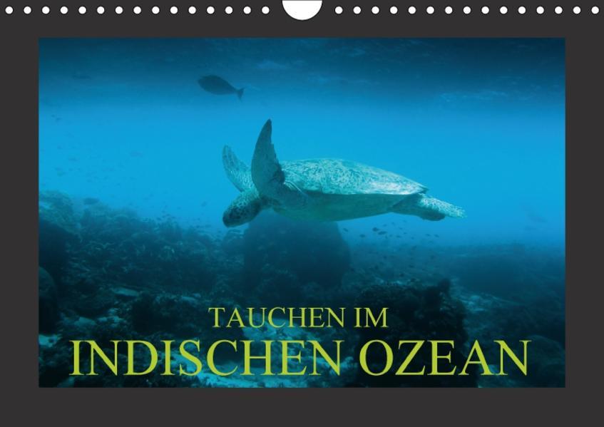 Tauchen im Indischen Ozean (Wandkalender 2017 DIN A4 quer) - Coverbild