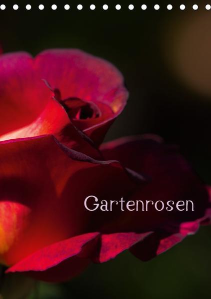 Gartenrosen (Tischkalender 2017 DIN A5 hoch) - Coverbild