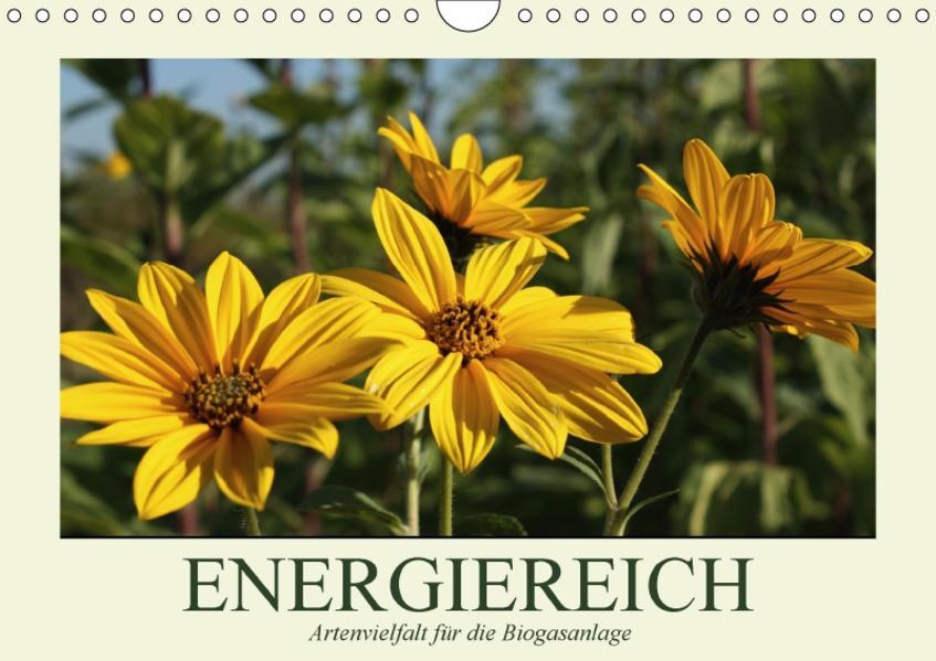 ENERGIEREICH - Artenvielfalt für die Biogasanlage / CH-Version (Wandkalender 2017 DIN A4 quer) - Coverbild