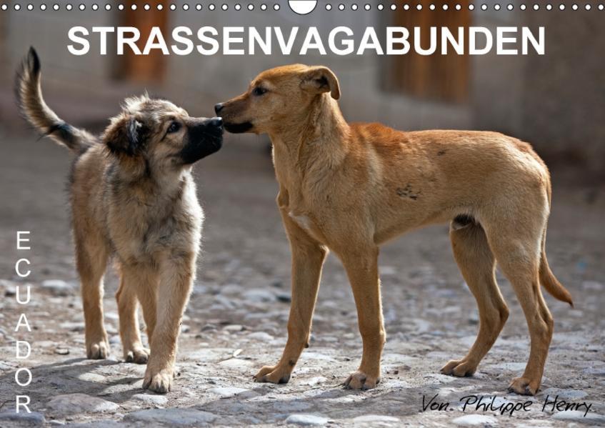 STRASSENVAGABUNDEN (Wandkalender 2017 DIN A3 quer) - Coverbild