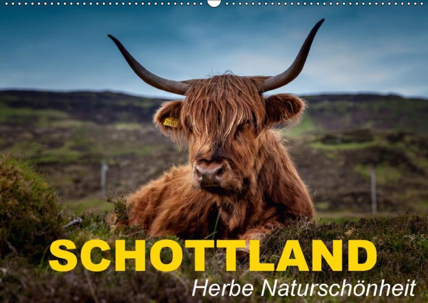 Schottland • Herbe Naturschönheit (Wandkalender 2017 DIN A2 quer) - Coverbild