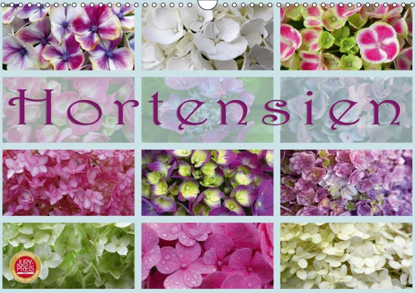Hortensien / Geburtstagskalender (Wandkalender 2017 DIN A3 quer) - Coverbild