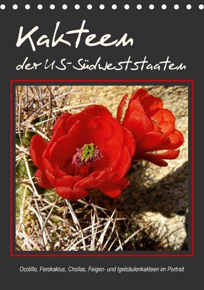 Kakteen der US-Südweststaaten (Tischkalender 2017 DIN A5 hoch) - Coverbild