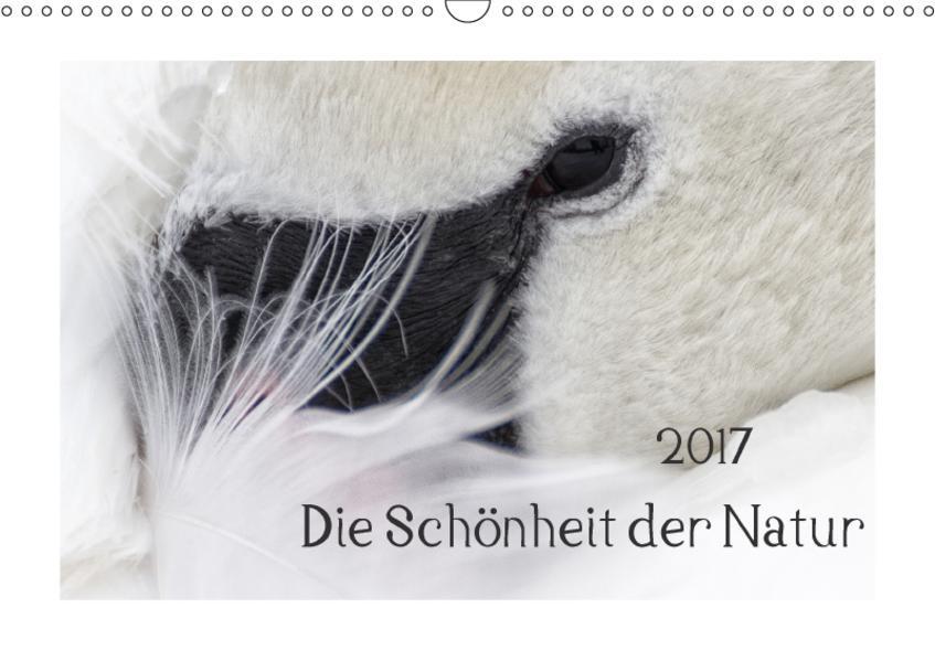 Die Schönheit der Natur (Wandkalender 2017 DIN A3 quer) - Coverbild