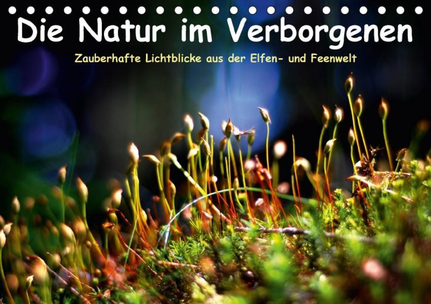 Die Natur im Verborgenen (Tischkalender 2017 DIN A5 quer) - Coverbild
