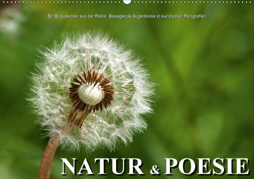 Natur & PoesieAT-Version  (Wandkalender 2017 DIN A2 quer) - Coverbild