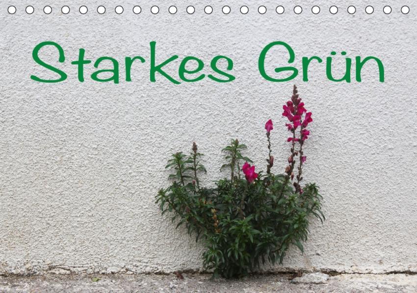Starkes Grün (Tischkalender 2017 DIN A5 quer) - Coverbild