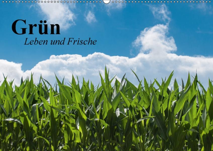 Grün. Leben und Frische (Wandkalender 2017 DIN A2 quer) - Coverbild