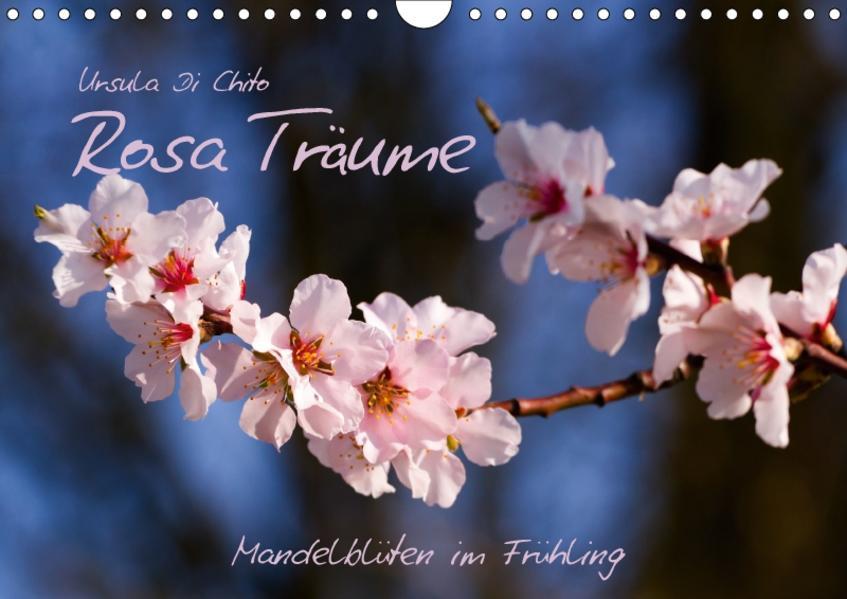 Rosa Träume - Mandelblüten im Frühling (Wandkalender 2017 DIN A4 quer) - Coverbild