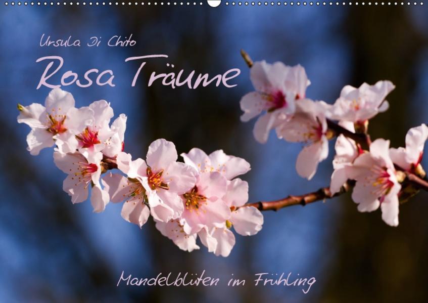 Rosa Träume - Mandelblüten im Frühling (Wandkalender 2017 DIN A2 quer) - Coverbild