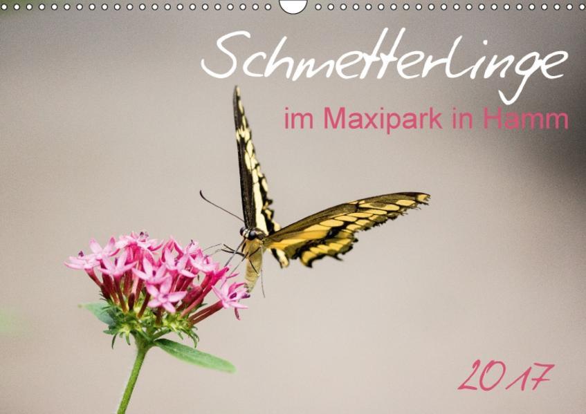 Schmetterlinge im Maxipark in Hamm (Wandkalender 2017 DIN A3 quer) - Coverbild