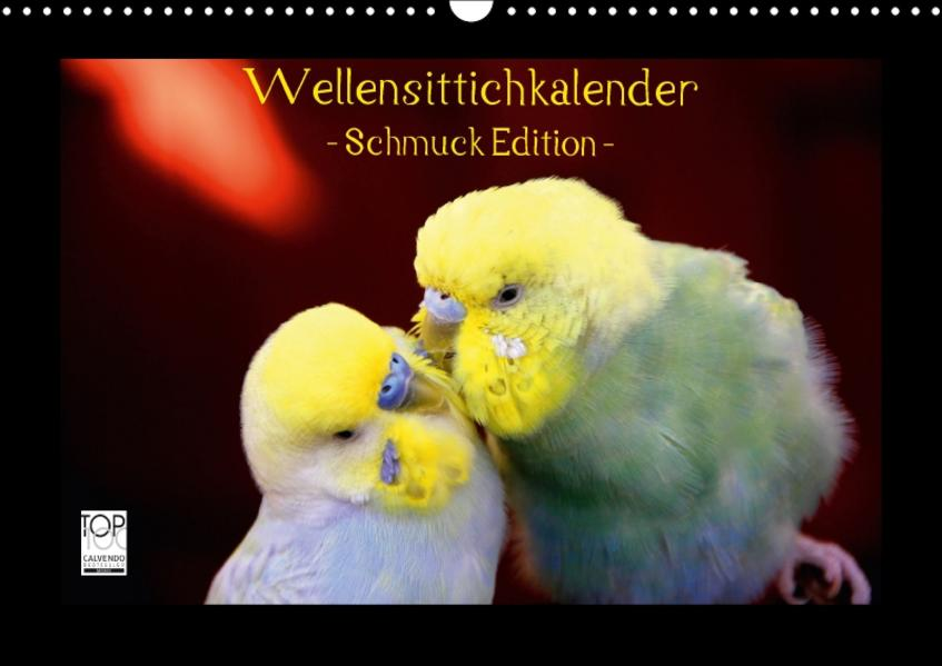 Wellensittichkalender - Schmuck Edition (Wandkalender 2017 DIN A3 quer) - Coverbild