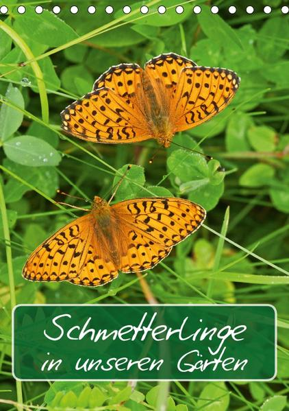 Schmetterlinge in unseren Gärten / Planer (Tischkalender 2017 DIN A5 hoch) - Coverbild