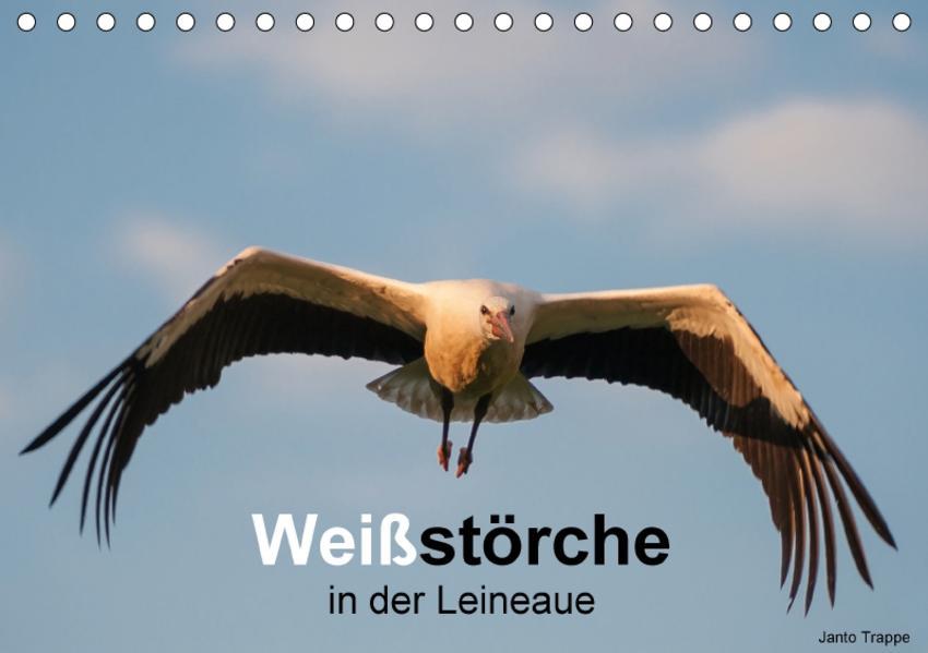 Weißstörche in der Leineaue (Tischkalender 2017 DIN A5 quer) - Coverbild