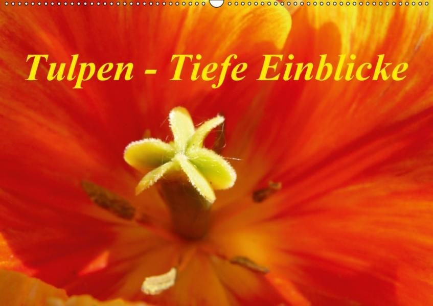 Tulpen - Tiefe Einblicke (Wandkalender 2017 DIN A2 quer) - Coverbild