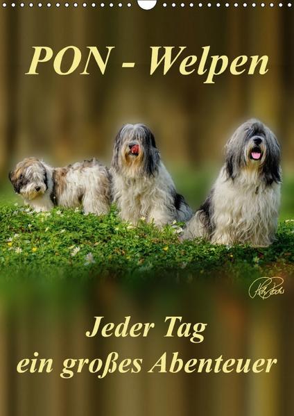 PON-Welpen - jeder Tag ein großes Abenteuer / Planer (Wandkalender 2017 DIN A3 hoch) - Coverbild