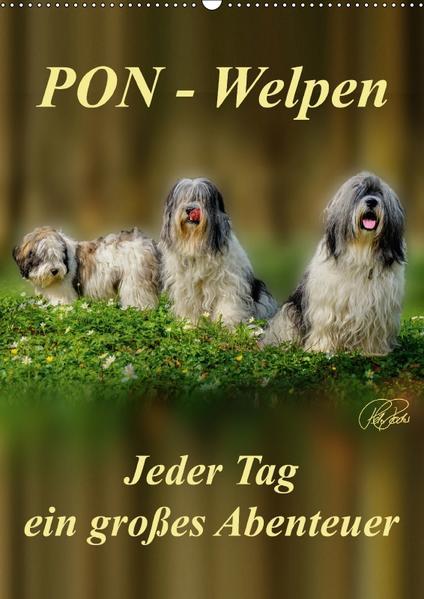 PON-Welpen - jeder Tag ein großes Abenteuer / Planer (Wandkalender 2017 DIN A2 hoch) - Coverbild