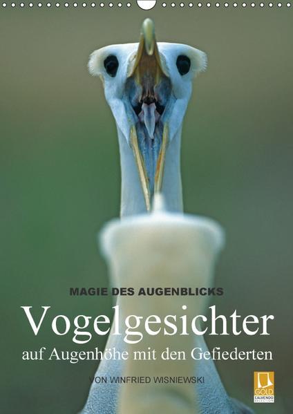 Magie des Augenblicks - Vogelgesichter - auf Augenhöhe mit den Gefiederten (Wandkalender 2017 DIN A3 hoch) - Coverbild