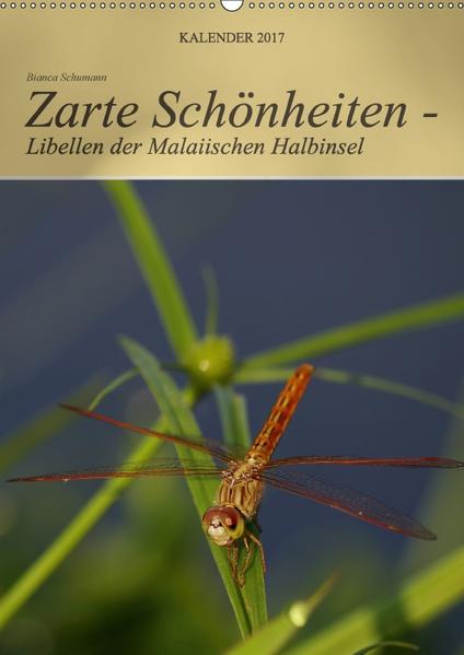 Zarte Schönheiten - Libellen der Malaiischen Halbinsel (Wandkalender 2017 DIN A2 hoch) - Coverbild