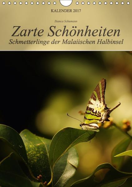 Zarte Schönheiten Schmetterlinge der Malaiischen Halbinsel (Wandkalender 2017 DIN A4 hoch) - Coverbild