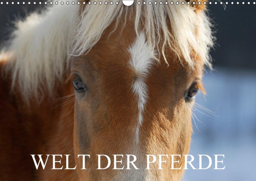 Welt der Pferde (Wandkalender 2017 DIN A3 quer) - Coverbild