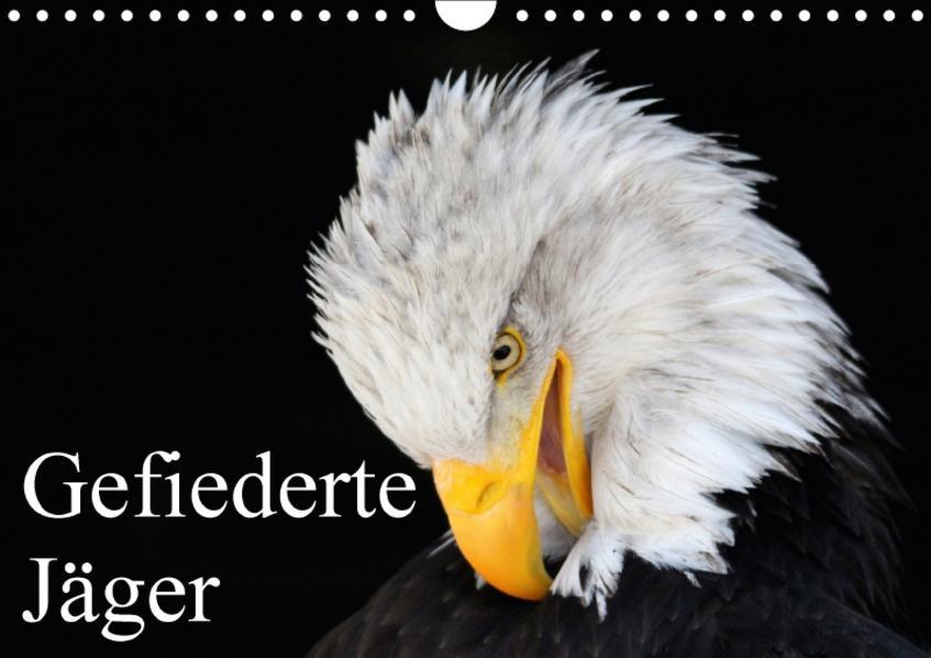 Gefiederte Jäger / Geburtstagskalender (Wandkalender 2017 DIN A4 quer) - Coverbild