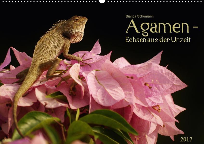 Agamen - Echsen aus der Urzeit (Wandkalender 2017 DIN A2 quer) - Coverbild