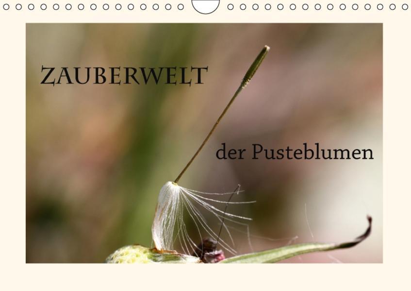 Zauberwelt der Pusteblumen / Geburtstagskalender (Wandkalender 2017 DIN A4 quer) - Coverbild