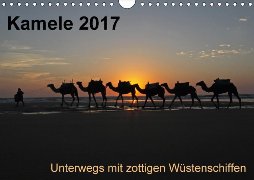 Kamele 2017 - Unterwegs mit zottigen WüstenschiffenCH-Version  (Wandkalender 2017 DIN A4 quer) - Coverbild
