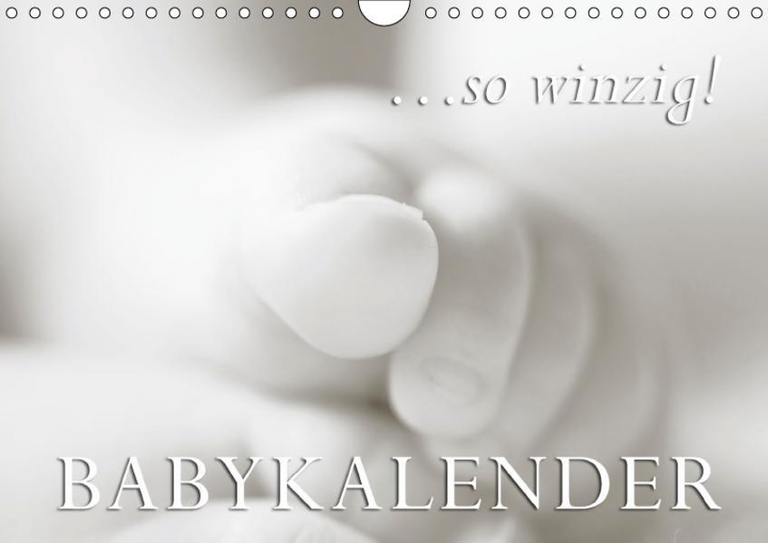 ...so winzig - Babykalender (Wandkalender 2017 DIN A4 quer) - Coverbild