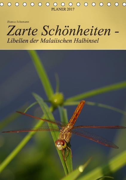 Zarte Schönheiten - Libellen der Malaiischen Halbinsel / Planer (Tischkalender 2017 DIN A5 hoch) - Coverbild