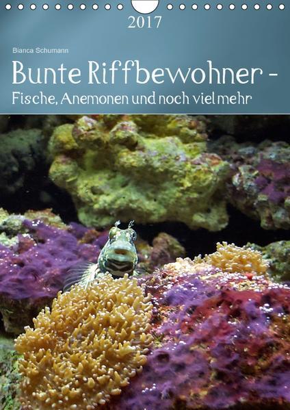 Bunte Riffbewohner - Fische, Anemonen und noch viel mehr (Wandkalender 2017 DIN A4 hoch) - Coverbild
