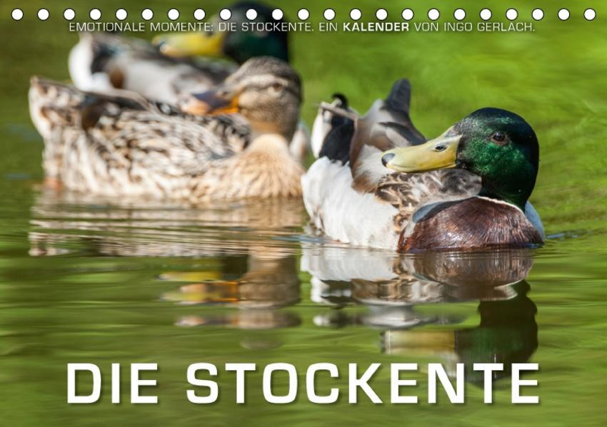 Emotionale Momente: Die Stockente. (Tischkalender 2017 DIN A5 quer) - Coverbild