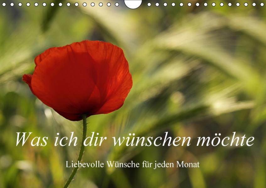 Was ich dir wünsche / Liebevolle Wünsche für jeden Monat (Wandkalender 2017 DIN A4 quer) - Coverbild