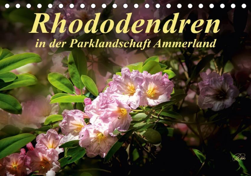 Rhododendren in der Parklandschaft Ammerland / Geburtstagskalender (Tischkalender 2017 DIN A5 quer) - Coverbild