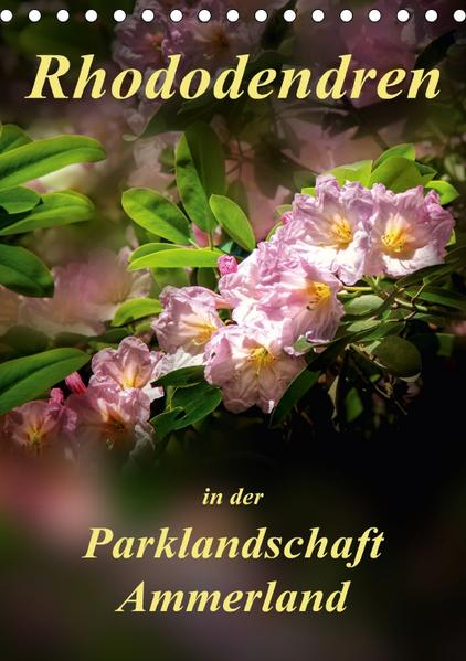 Rhododendren in der Parklandschaft Ammerland / Planer (Tischkalender 2017 DIN A5 hoch) - Coverbild