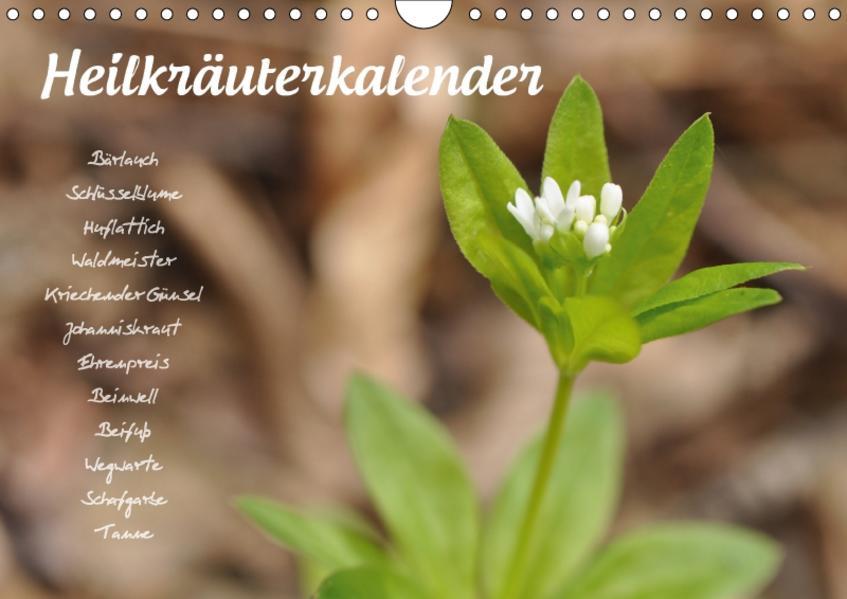 HeilkräuterkalenderAT-Version  (Wandkalender 2017 DIN A4 quer) - Coverbild