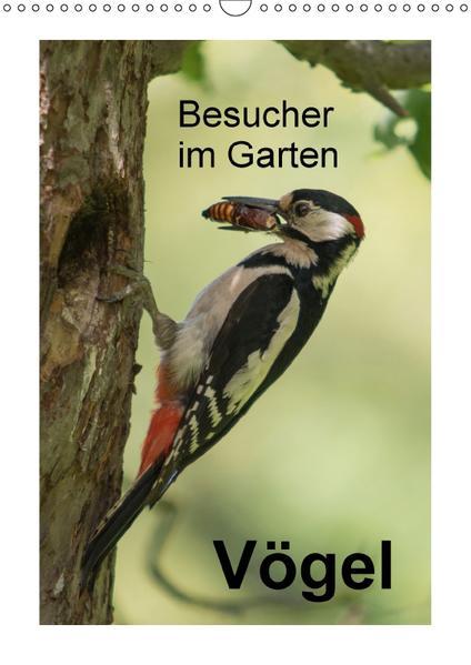 Besucher im Garten - Vögel (Wandkalender 2017 DIN A3 hoch) - Coverbild