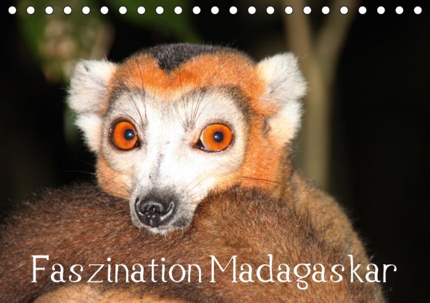 Faszination Madagaskar (Tischkalender 2017 DIN A5 quer) - Coverbild
